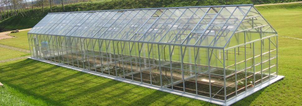 Теплицы из стекла промышленное производство культур